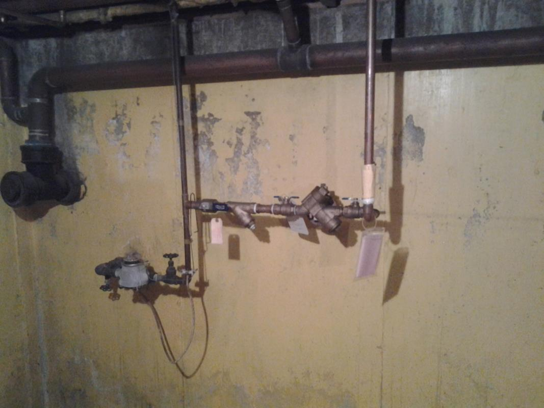 Backflow Device image from Braidwood